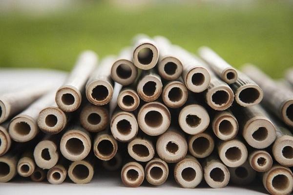 Quy trình sản xuất ống hút tre