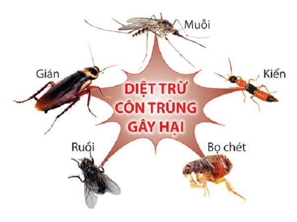 Cua Luoi Chong Muoi 4