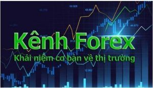Thi Truong Forex 300x172 1