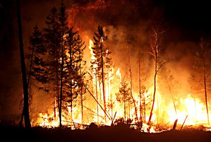Cháy rừng có thể tạo ra lượng lớn Acetone ảnh hưởng đến sức khỏe con người