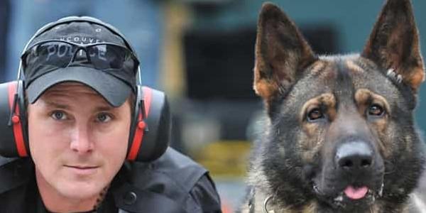 Huấn luyện chó nghiệp vụ tại nhà cần chuẩn bị gì?