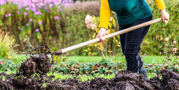 Cách cải tạo đất trồng cơ bản